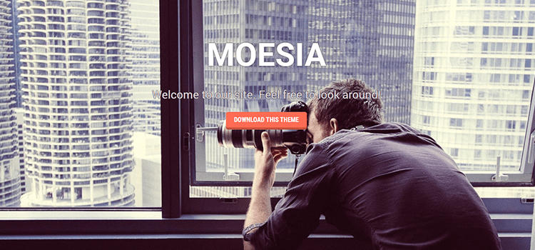 Moesia one page web template