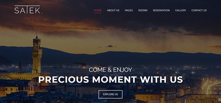 Satek Website Template